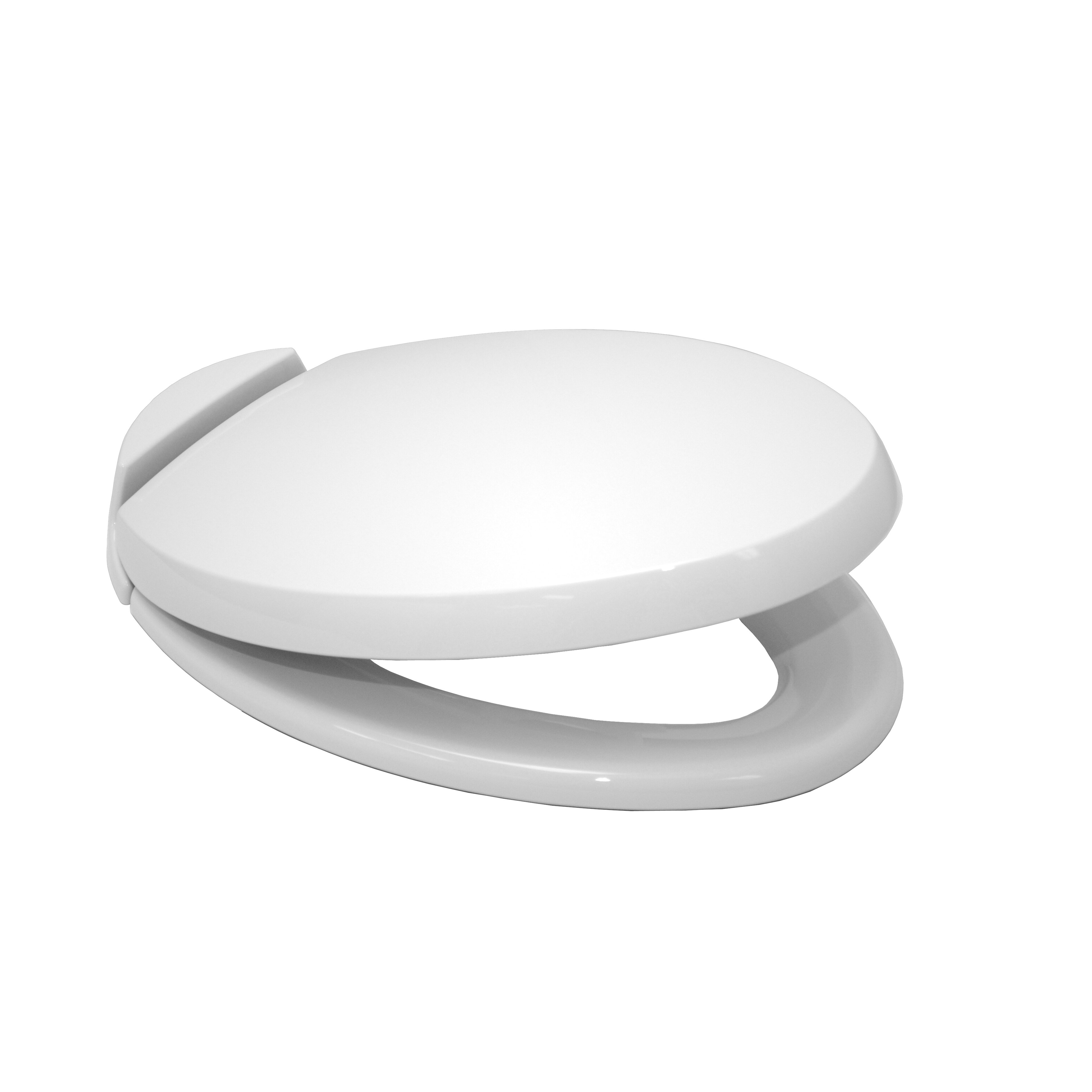 Toto SoftClose Elongated Beveled Lid Toilet Seat  Reviews Wayfair - Toto japanese toilet seat